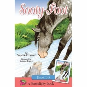 Sooty Foot book cover